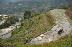 Banaue, Philippinen