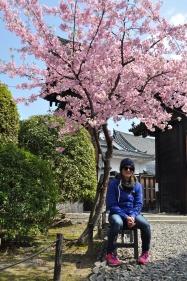 Japan, Kyoto, Sanjusangen-do