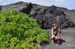 Hawaii, Big Island, Kilauea state park