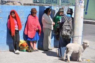 Ecuador, Saquisili Market