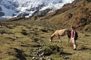 Peru, Salkantay Trek